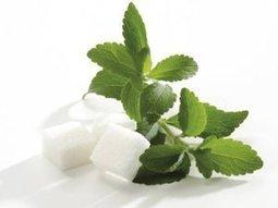 Stevia: avenir ou enfer? | Toxique, soyons vigilant ! | Scoop.it