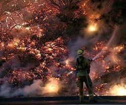 Wildfires projected to worsen with climate change   Sustain Our Earth   Scoop.it