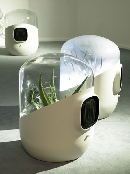 Urbanarbolismo » Como utilizar plantas para absorber contaminantes del aire. | Educacion, ecologia y TIC | Scoop.it