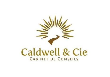 Too Pixel - Création de logo - Caldwell & Cie | Agence web et Webmarketing | Scoop.it