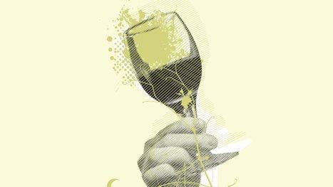 Vin et biodynamie - IN VINO VITA | Gastronomy & Wines | Scoop.it