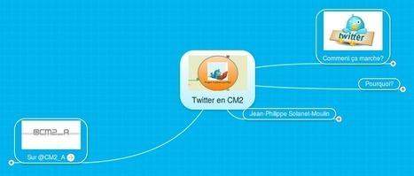 Utiliser Twitter en CM2 : pourquoi ? Comment ? | TICE, Web 2.0, logiciels libres | Scoop.it