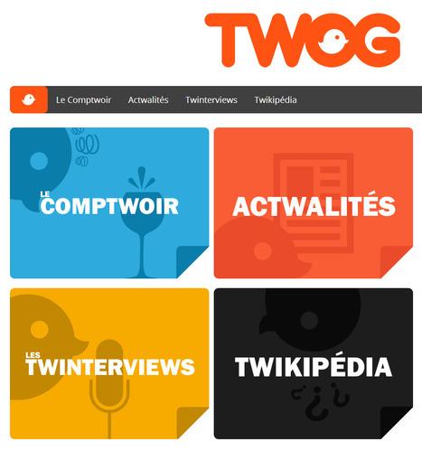 Twog | C'est Twitter, c'est un blog, c'est TWOG ! | Twitter dans l'enseignement | Scoop.it