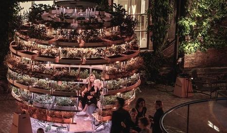 Une boule de verdure étonnante pour promouvoir les fermes urbaines   Veille positive de l'actualité durable et de la nouvelle consommation   Scoop.it