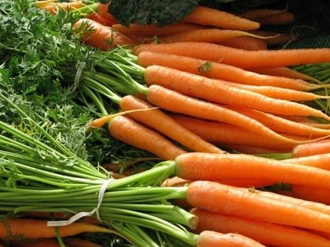 Planter les épluchures et restes de légumes pour les faire repousser ! - Blog Alsagarden - Plantes Rares, Jardins Naturels & Actualités | Plantes & Fleurs Comestibles | Scoop.it