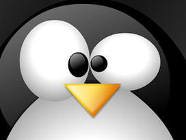 Nom de code : Linux [documentaire] | Distributions Linux | Scoop.it