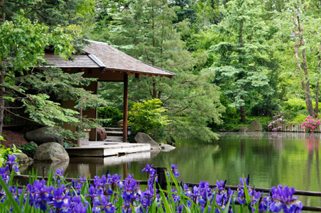 Rockford's Japanese gardens an oasis of tranquility   The Japan Times Online   Garden Designer   Scoop.it