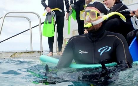 #Scuba diver finds wedding ring at bottom of Great Barrier Reef - Australia | ocngirl | Scoop.it