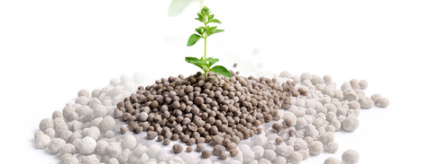 Govt assures fertilisers industry of multifarious support | Foreign Trade Magazine | Scoop.it
