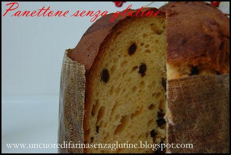Uncuoredifarinasenzaglutine: Panettone Senza Glutine a Biga | celiachia network | Scoop.it