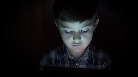 Consejos para que tus hijos eviten a los depredadores sexuales en la red | La Mejor Educación Pública | Scoop.it