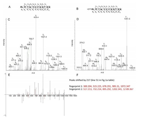 Journal of Proteome Research: Identification of related peptides through the analysis of fragment ion mass shifts (2014) | Publications from The Sainsbury Laboratory | Scoop.it