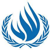 UNHCR: Amnesty International Annual Report 2013 - Indonesia   HOLANDIA NEWS   Free West Papua News   Scoop.it