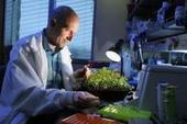Virginia Tech scientist proposes revolutionary naming system for all life on Earth | This is interesting. | Scoop.it