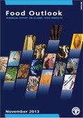 PUBLICATION: Food Outlook - November 2013 | Aqua Events & e-Publications | Scoop.it