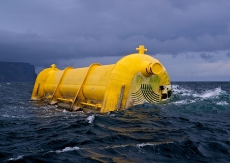 Sea life to be 'protected' from green energy sites - Scotsman | My Scotland | Scoop.it