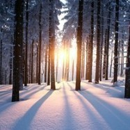 Winter Solstice: a Time for Reflection, Self-Acceptance, and Growth | Mindful | Scoop.it