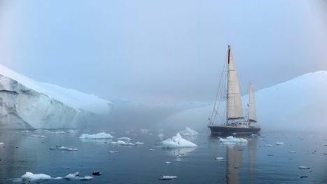 Fleur Australe - 23 Juillet : Vers Port Victor #Groenland #glacier #EqipSermia | Hurtigruten Arctique Antarctique | Scoop.it