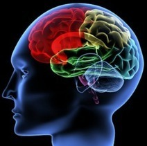 Habilidades cognitivas para un aprendizaje eficaz | educacion-y-ntic | Scoop.it