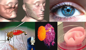 Medical innovations to expect in 2014 | The Future Today | Scoop.it