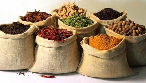 Kerala - Spice Garden Of India - Myfoodforu.com | Myfoodforu: All About Food, Travel, Health and Beauty | Scoop.it