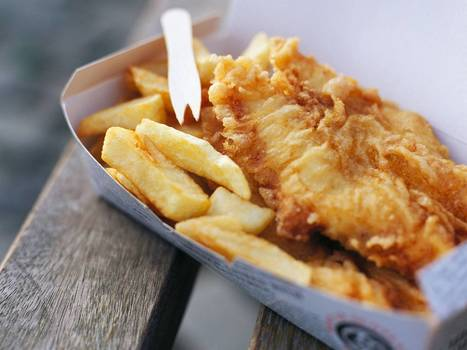 How Britain's taste for fish and chips is putting endangered fin whales at risk   Heal the world   Scoop.it