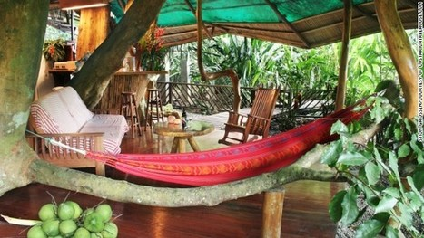 7 deluxe tree-house hotels | Road Tripping | Scoop.it
