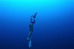Karol Meyer sets world freediving record in Bonaire   Indigo Scuba   Scoop.it