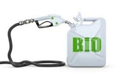 Biofuel Crisis.   The Indigenous Uprising of the British Isles   Scoop.it