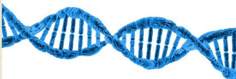La biologie moléculaire au secours de l'environnement | topic | Scoop.it