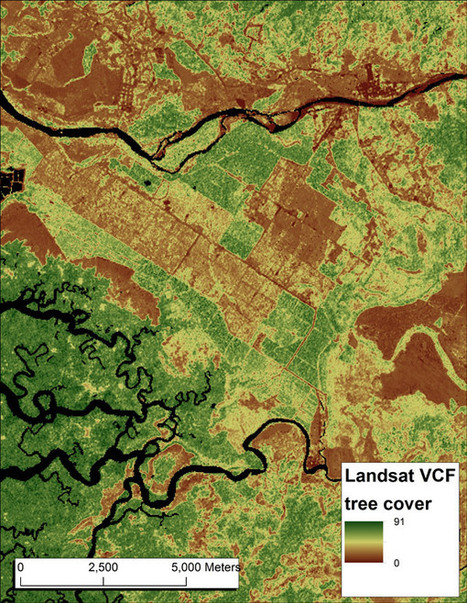 Researchers develop highest-resolution global forest cover dataset to date | GisZone | Scoop.it