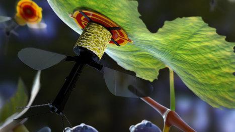 Tiny Robot Can Fly and, Amazingly, Rest | Post-Sapiens, les êtres technologiques | Scoop.it
