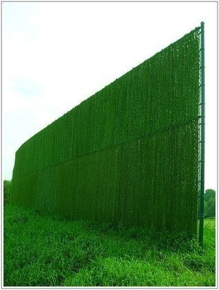 monumental sexy Green Fence design | Lovely Image Picture Photo and Wallpaper | Scoop.it