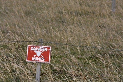 9 Dangerous Job Search Land Mines To Avoid | Mentor+ CAREER | Scoop.it
