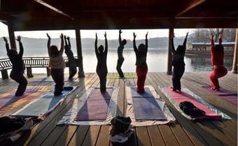 Manager e yoga, scelte più 'eco' con la meditazione - Adnkronos/IGN | Counseling Milano | Scoop.it