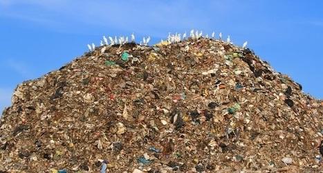 TOP: 9 formas de generar menos basura en tu vida cotidiana | Paz y bienestar interior para un Mundo Mejor | Scoop.it