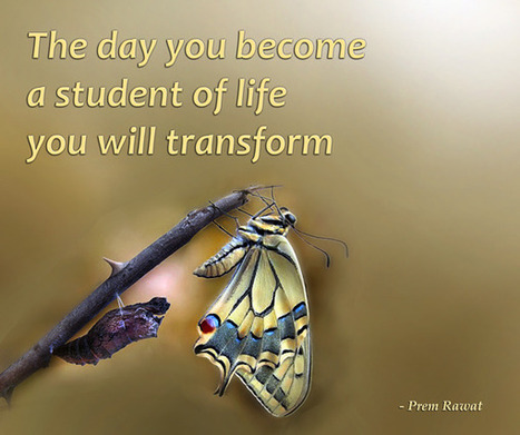 Be a Student of Life   Innovatus   Scoop.it