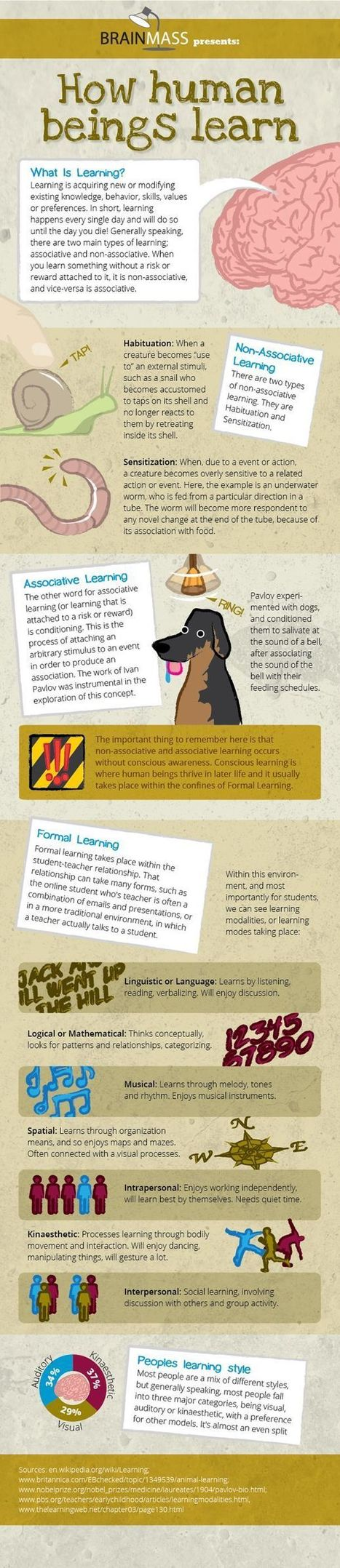 How Human Beings Learn (Infograph) | Professional support | Scoop.it