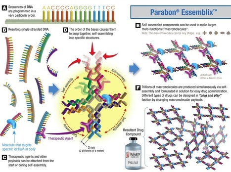 Automated drug design using synthetic DNA self-assembly | Amazing Science | Scoop.it