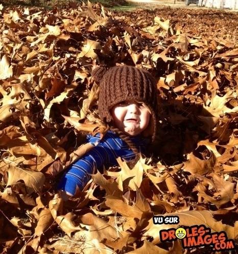 Il adore jouer dans les feuilles | Trollface , meme et humour 2.0 | Scoop.it