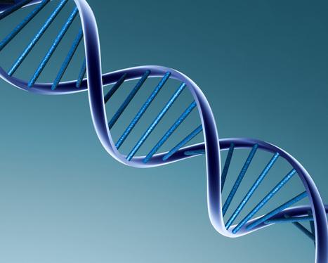 Patentando el ADN | Mi Patente | Revista Digital sobre Patentes y actualidad en México | Patentes químicas, farmacéuticas y biotecnológicas | Scoop.it