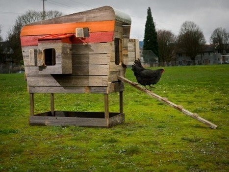 Modern Coops for Modern Chickens | Sustainable Farming | Scoop.it