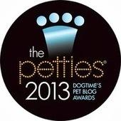 2013 Petties award winners announced by DogTime Media | Pet News | Scoop.it