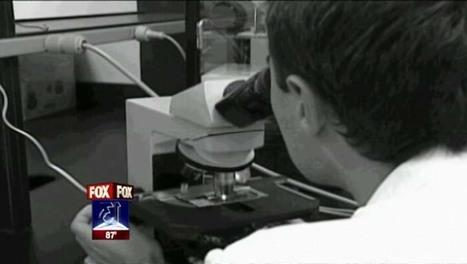 Documents describe 'debacle' of welfare drug testing | Humanity | Scoop.it