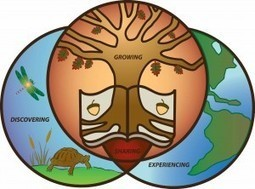 The Place of Environmental Education at Rio+20 | Human Impacts ... | Education for Sustainable Development | Scoop.it