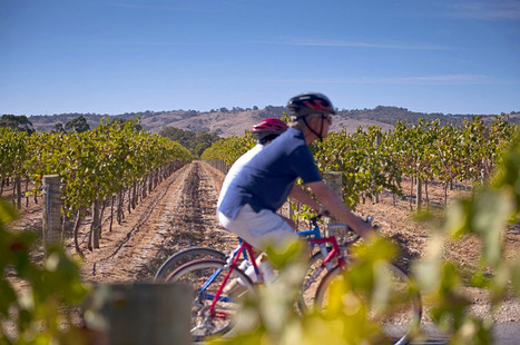 5 Reasons Why Cycling Tourism Matters | rural enterprise | Scoop.it