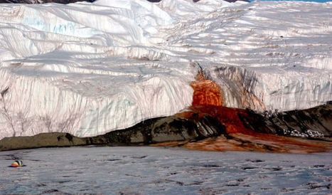 The  Antartica's Bleeding Glacier | Astrobiology | Scoop.it