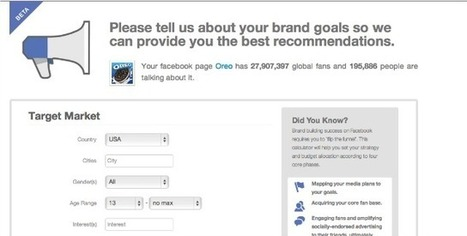 Calculate Your 2013 Facebook Ad Spend With This Free Tool | DV8 Digital Marketing Tips and Insight | Scoop.it