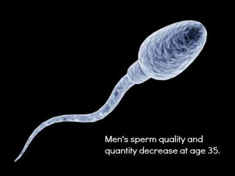 Men's sperm quality decreases at age 35 - health | Health Studies Updates | Scoop.it