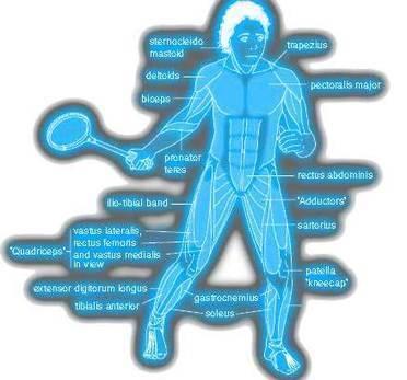 Movement Analysis | Biomechanics | Scoop.it